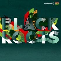 BlackRootsOTG Logos